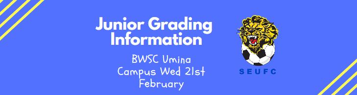 JUNIOR Grading Info
