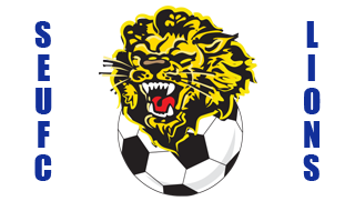 southern ettalong united lions logo
